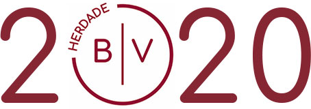 HBV 2020