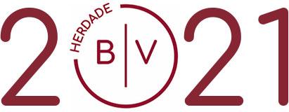 HBV 2021